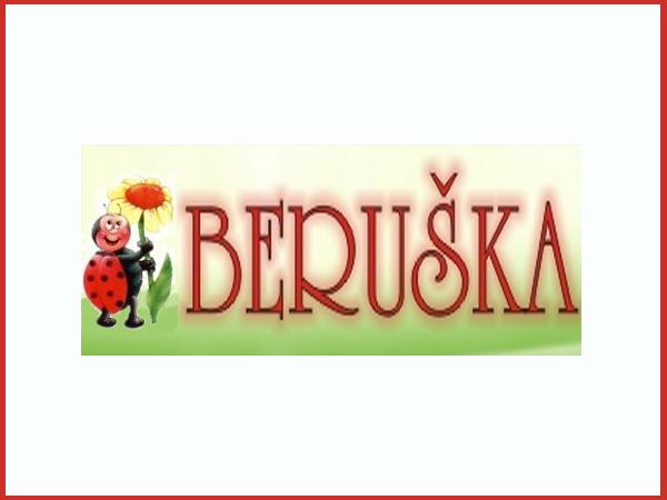 Partner Beruška